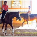 training scale dressage