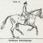 working canter classic german